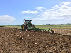 Macadamia farm development, greaves farming, farm development, farm contracting, cultivation contracting, agricon, agri-con, Agri-Con Solutions, Bundaberg farm, Bundaberg contract farming