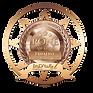 Rone-Badge-Cover Design Finalist-2020.pn