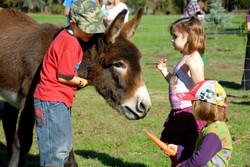DFFS - Kids with JR the Donkey