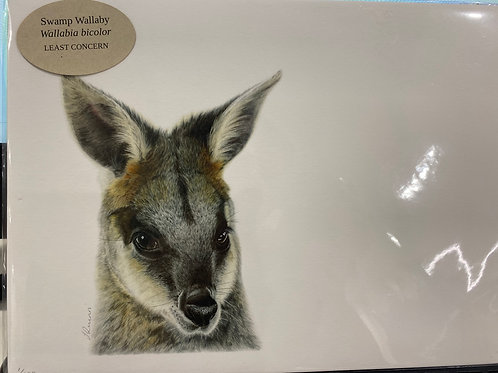 Jodie Quinn - Swamp Wallaby