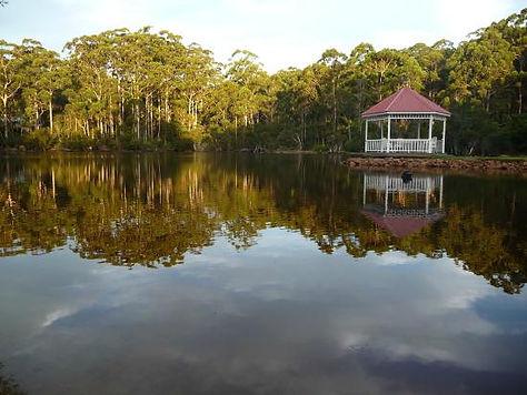 forest-lodge-resort.jpg