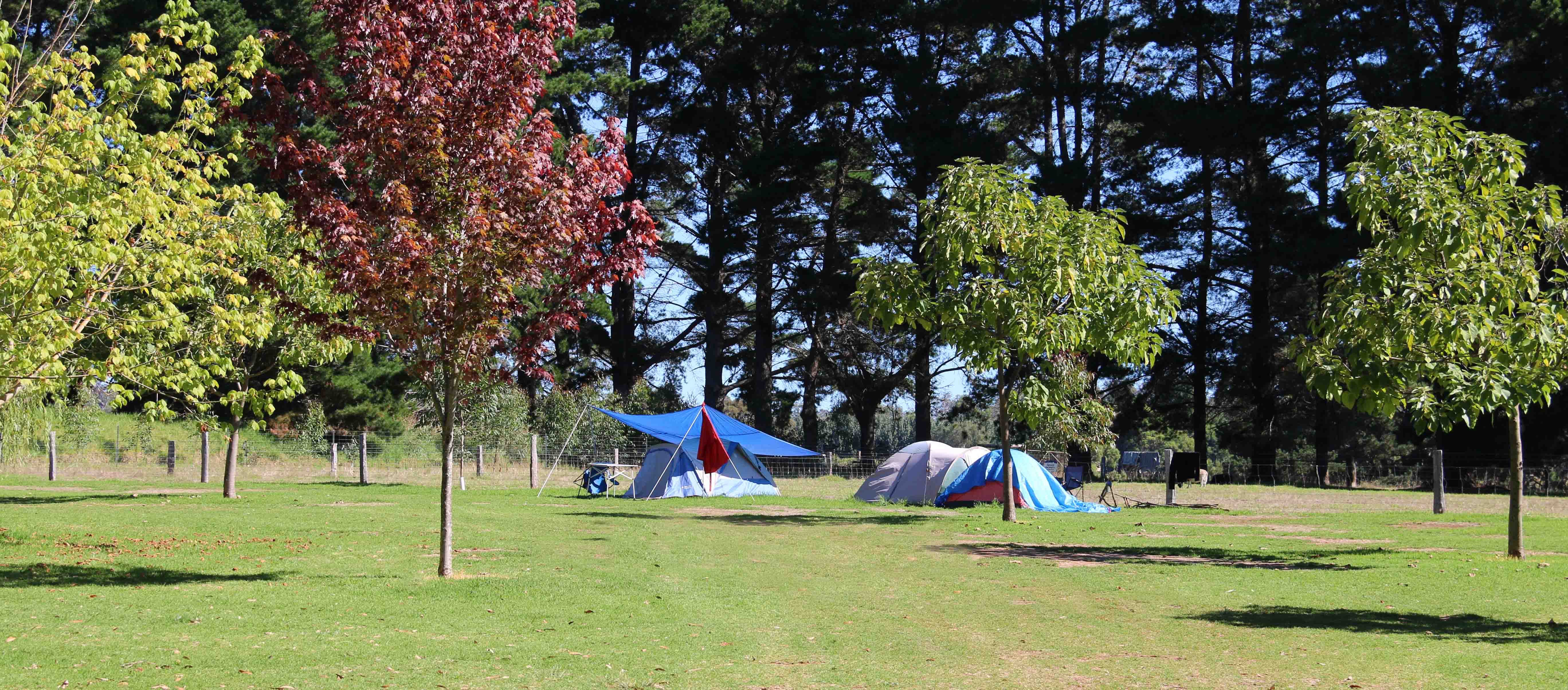 Camping_968