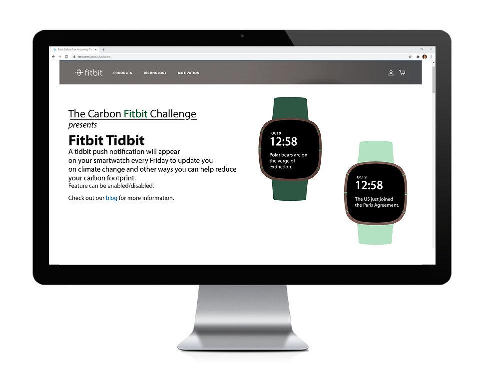 Fitbit Tidbit Web.jpg