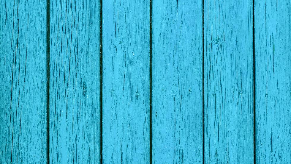 עץ כחול.png