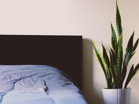 Get your beauty sleep! Five tips to better sleep.