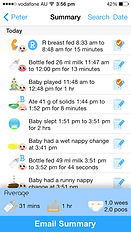 The Phoenix Diary boy log summary page