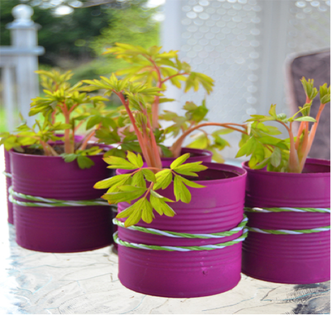DIY planters create tins paint
