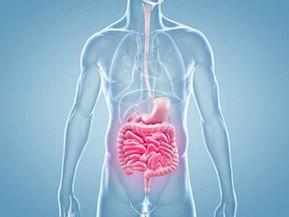 Da li ste znali da 90% ćelija u vašem organizmu uopšte nisu ljudske ćelije?!