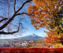 Mt Fuji Fall