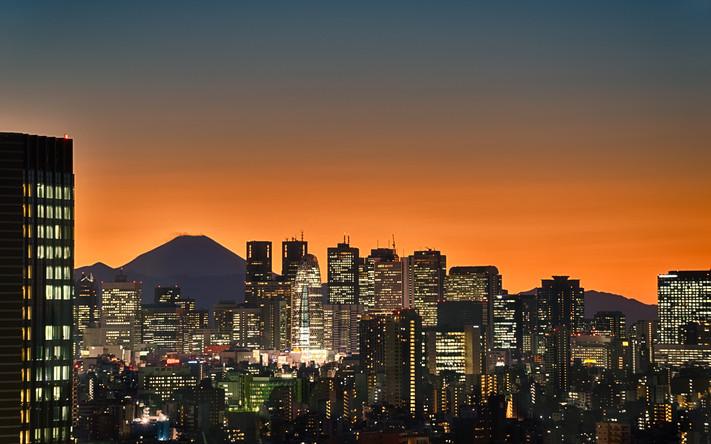 Tokyo Mt Fuji