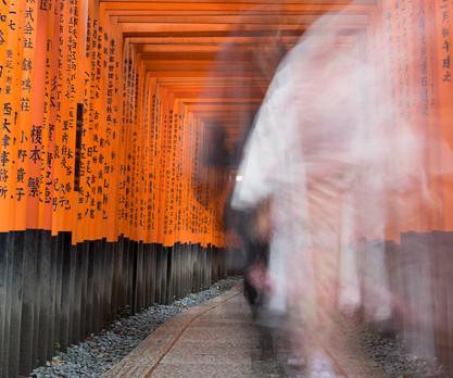 Fushimi ghosts
