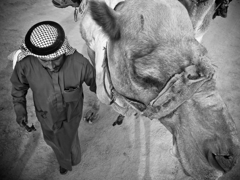 Bedouin + camel