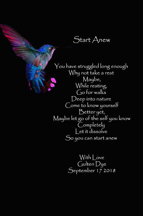 Start Anew