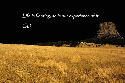 Life is fleeting, so is our experience o