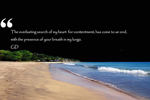 The everlasting search of my heart