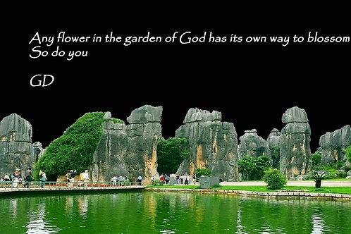 Any flower in the garden of God has its