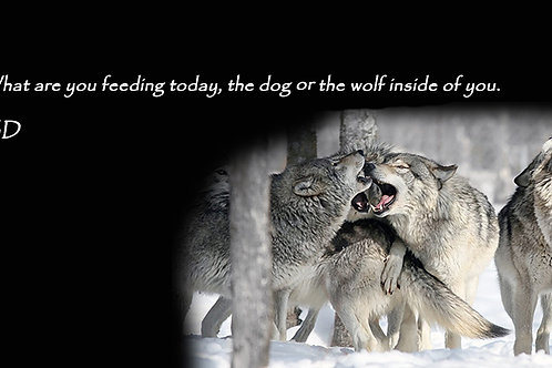 What are you feeding today, the dog or the wolf.