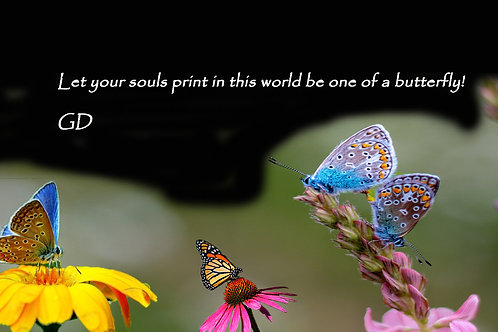 Let your souls print in this world be on