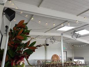 LED Festoon Lights perfect for weddings  Warm White  $10 per 4 meters