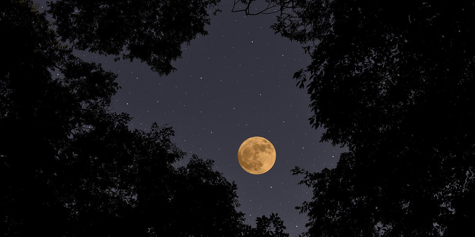 Full Moon Ritual with Karissa Dean