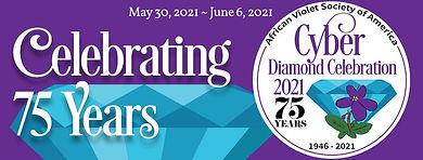 AVSA-2021-Cyber-Convention-banner.jpg