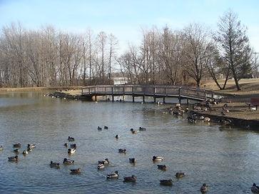 FriendsPark-pond.jpg