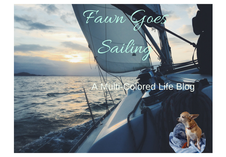 Fawn Goes Sailing Pt.3