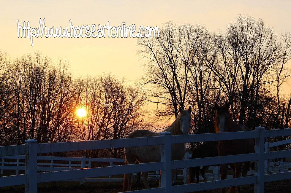 horses at dawn in snowy background jpg