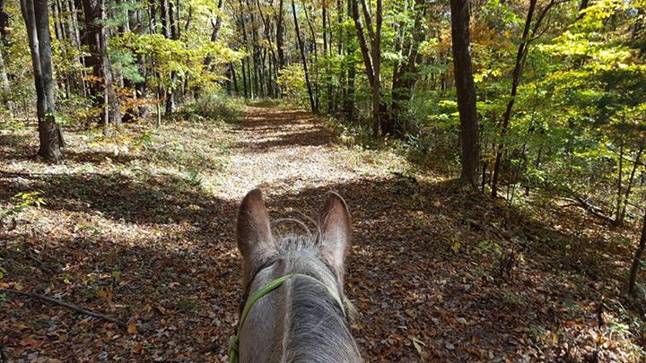 Trail riding at Mohican