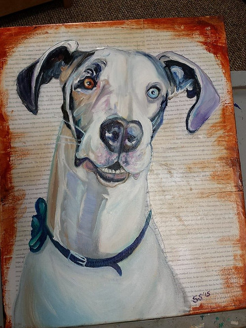 Pet Portrait with Breed Info. Text Background