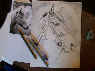 Horse Portrait 'Work in Progress'