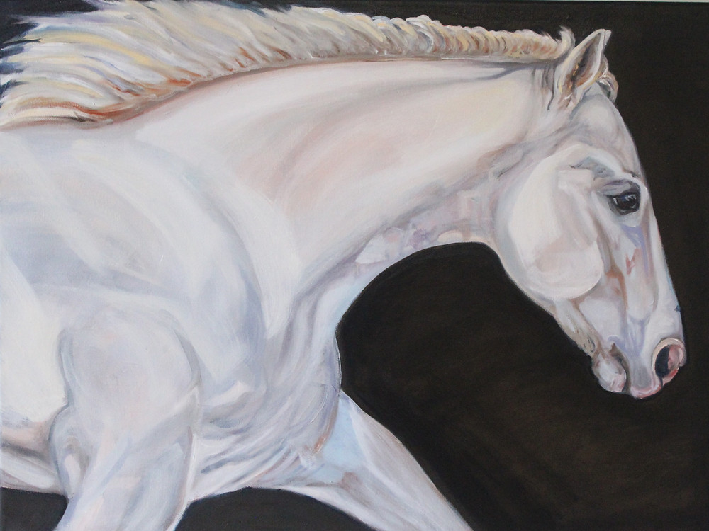 White Horse Painting by Sue Steiner, Stride By