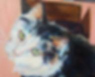 Cat Pet Portrait oil painting by Sue Steiner