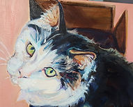 Cat Pet Portrait oil painting by Sue Steiner