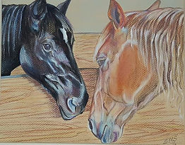 Best Friends, Horse Portrait by Sue Steiner