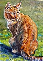 Ginger Tabby Oil Painting