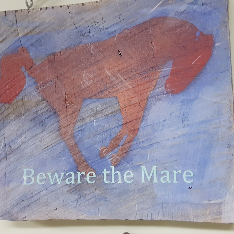 Beware the Mare Wooden Sign