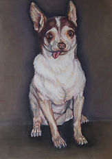 Pet Portraits by Sue Steiner