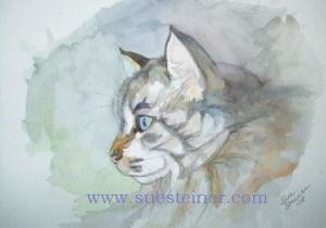 Pen and Ink with Watercolor, Cat Portrait
