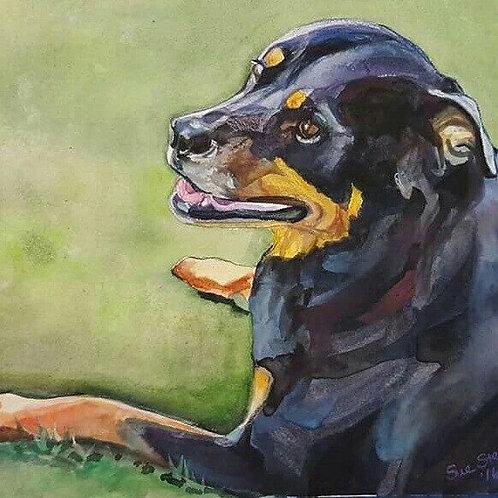 Pet Portrait, Watercolor 11x 14