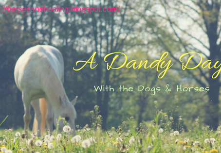 A Dandy Day with the Dogs (and Horses)