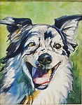 custom pet portrait of a shepherd dog.