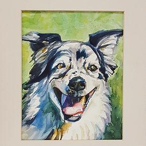 border collie dog watercolor pet portrait