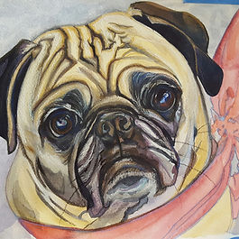Pug Pet Portrait in watercolors by Sue Steiner