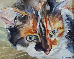 calico cat watercolor pet portrait