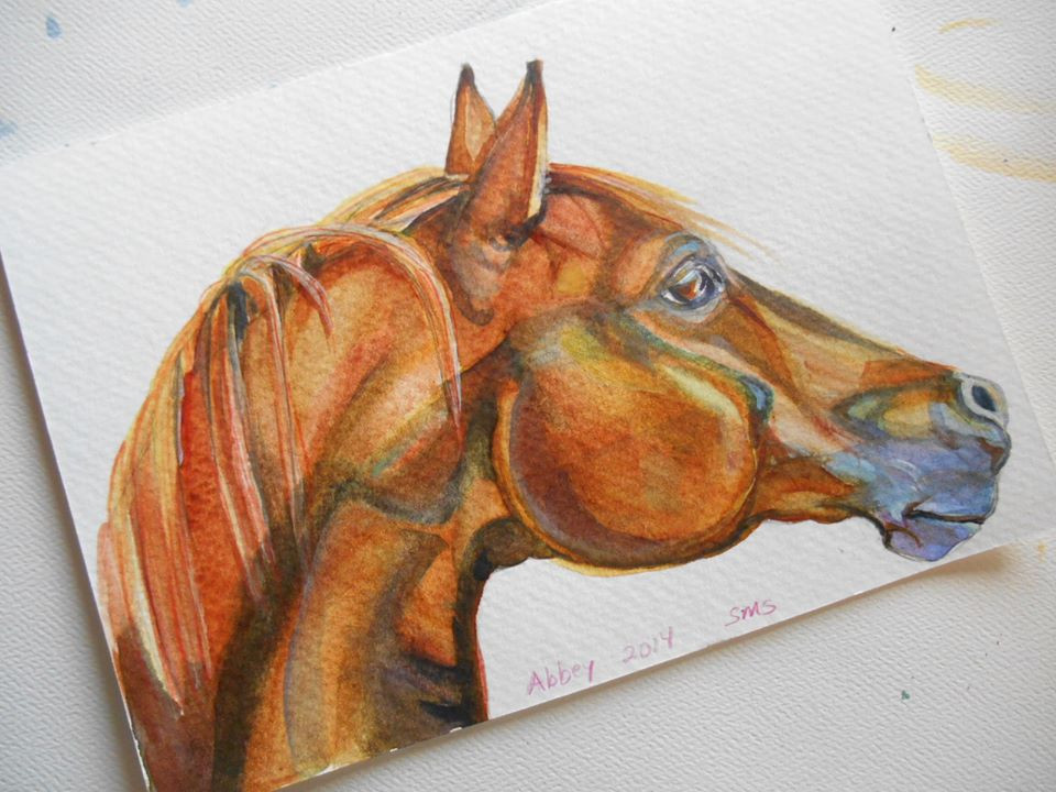 arabian horse watercolor portrait