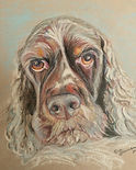 A colored pencil pet portrait.