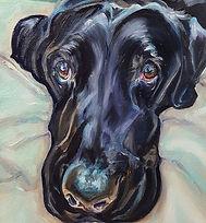 black lab mix oil painting