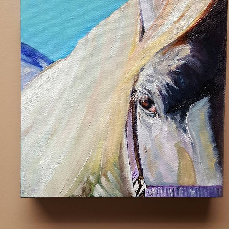 white horse in shadows painting
