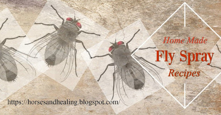 Homemade Fly Spray Recipes